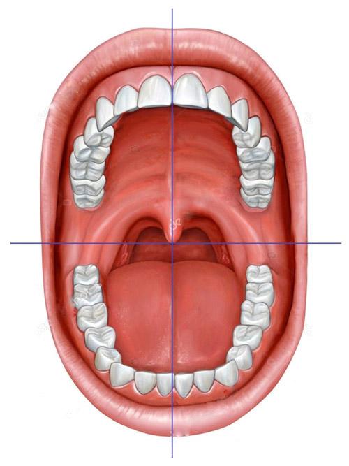 سیستم شماره گذاری دندان ها دستیار دندانپزشک