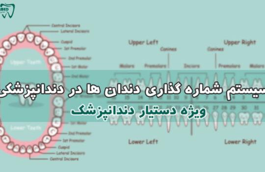 سیستم شماره گذاری دندان ها - سیستم شماره گذاری پالمر palmer numbering system دستیار دندانپزشک